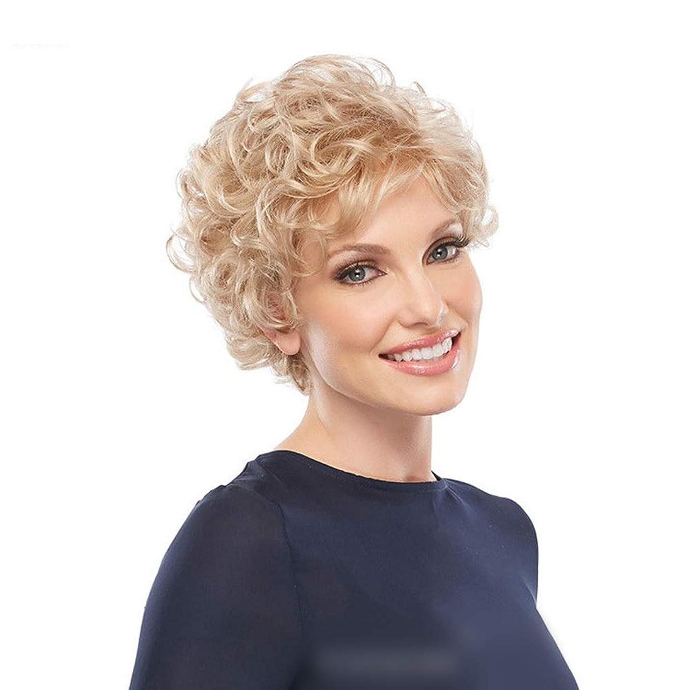 膨らみシンプルさ倉庫Yrattary 毎日の女性のための古典的なブロンドのかつら短い巻き毛ボブスタイル (色 : Blonde)