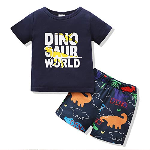 4 5 Year Old Boy Clothes Baby Boy Shorts Set Toddler Clothes for Boys 4T 5T Boy Clothes Summer Outfits Set