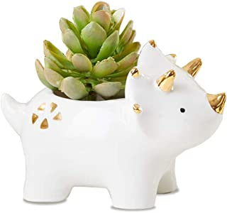 Dinosaur Ceramic Planter, Triceratop Flower Pot for Kids Room Decoration, Cute Succulent Planter Favor, Guest Gift and Dec...