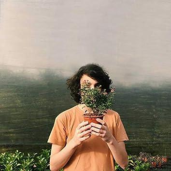 Tocar Em Flores Pelado