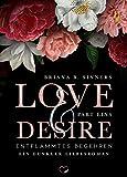 LOVE AND DESIRE: Entflammtes Begehren (Dunkler Liebesroman)