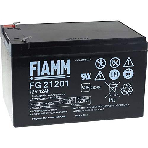 Fiamm FG21202 batteria piombo-acido 12 Volt, 12Ah