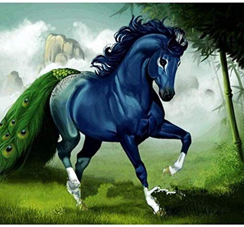 Wdsjxd Pintura por números, lienzo prepintado, diseño de caballo, pavo real, para adultos, principiantes, niños, 40 x 50 cm