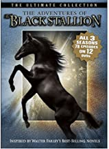 The Adventures of the Black Stallion: The Ultimate Collection