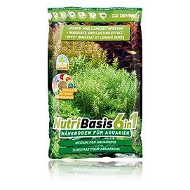 NutriBasis 6in1 bodengrund, 2.4 kg