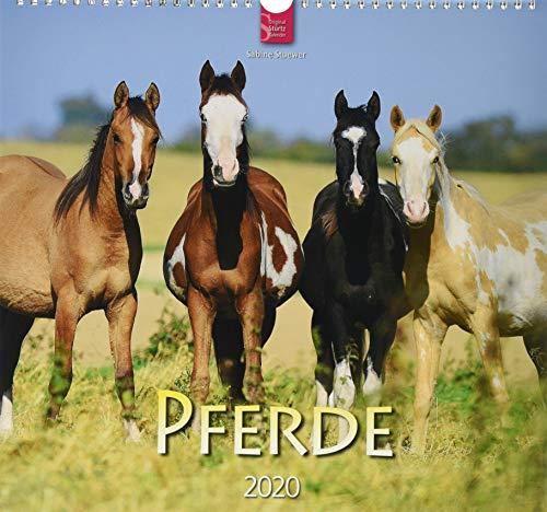 Pferde: Original Stürtz-Kalender 2020 - Mittelformat-Kalender 33 x 31 cm