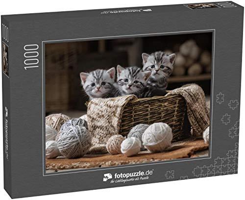 Puzzle 1000 Teile Gruppe von klein gestreiften Kätzchen in einem Alten Korb mit Garnkugeln - Klassische Puzzle mit edler Motiv-Schachtel, Fotopuzzle-Kollektion 'Tiere'