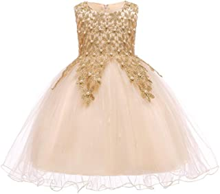 LUKEEXIN Girls Lace Embroidered Beaded Flower Birthday Party Princess Dress for 3-10 Years Old