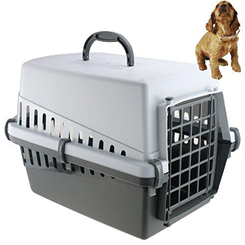 Smartweb Tier Transportbox 50cm x 31cm x 31cm Tragebox Transportkäfig Transportkorb für Katzen Hunde Hühner Hasen Meerschweinchen UVM Tiertransportbox Tierbox in Grau