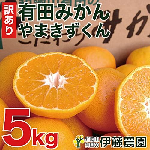伊藤農園 有田みかん 訳あり 傷有り サイズ不選別 3L 2L L S SS 5kg ミカン家庭用 果物 柑橘 和歌山