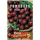 semi - pomodoro ciliegino nero - black cherry