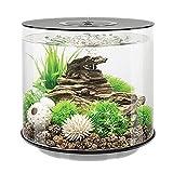 DUTUI Zylindrisches Kleines Desktop-Aquarium, Goldene Aquariumdekoration Im Wohnzimmer Und Im Büro,...