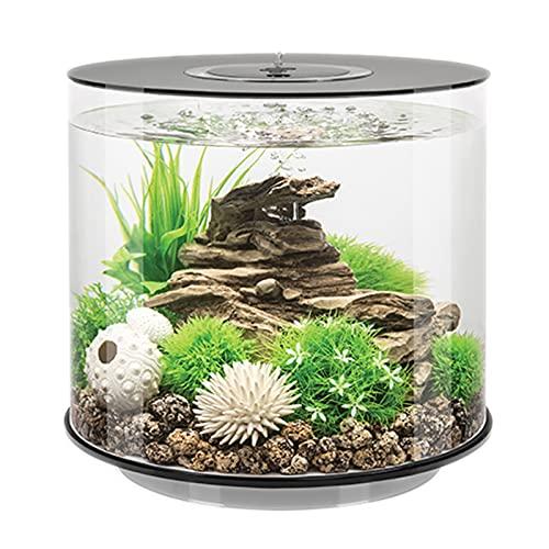 DUTUI Zylindrisches Kleines Desktop-Aquarium, Goldene Aquariumdekoration Im Wohnzimmer Und Im Büro, Transparentes Aquarium Ohne Wasserwechsel,Weiß