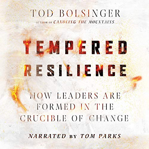 Tempered Resilience Audiobook By Tod Bolsinger cover art