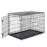 Amazon Basics Single-Door & Double-Door Folding Metal Dog or Pet Crate Kennel with Tray, 48 x 30 x 32.5 Inches