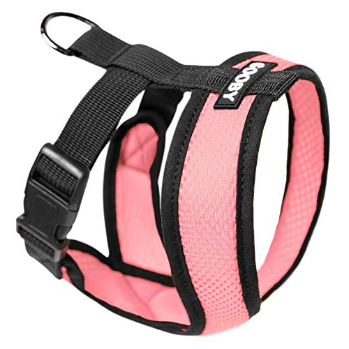 Gooby - Comfort X Head-in Harness, Small Dog...