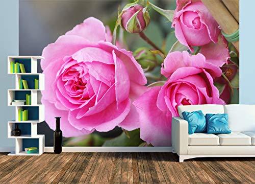Premium Foto-Tapete Rosa 'Parade' (versch. Größen) (Size XL | 465 x 310 cm) Design-Tapete, Wand-Tapete, Wand-Dekoration, Photo-Tapete, Markenqualität von ERFURT