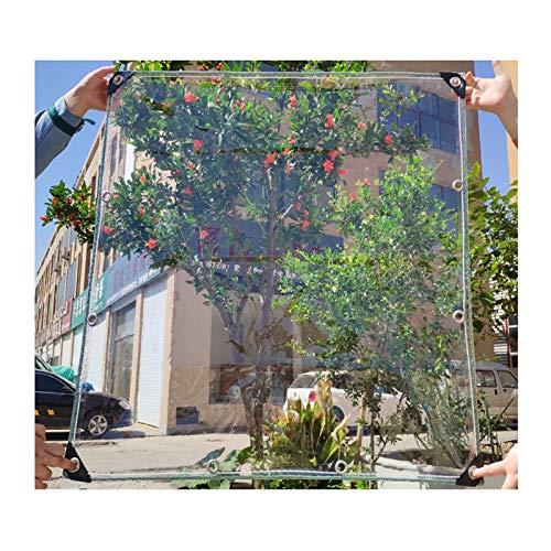 LIANGJUN Transparen Waterproof Tarpaulin, Greenhouse Plant Awnings, Edge Punching Tarps, Outdoor Balcony Corridor Dust-proof, 400g/㎡ (Color : Clear, Size : 1X1m)