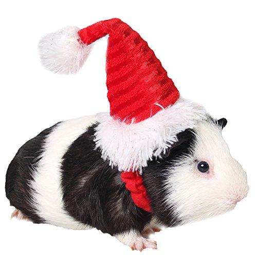 ZuckerTi Hut Mütze für Feiertag Halloween Weihnachts Weihnachten Geburtstag Kostüm für Katze Katzen Hunde Welpe Hamster Ratten Kleinnager Kleintiere Hase Kaninchen Haustier