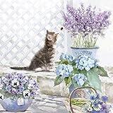 4tovaglioli per decoupage–a strati, 33x 33cm–gattino (4individuali per lavoretti e tovaglioli Art.)