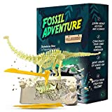 ALLESSIMO Fossil Adventure - Ancient Diplodocus Glow Fossil Dig Kit, Dino Glow in-The-Dark Complete Archeology Excavation Kit for Kids, Dig and Assemble Your Own Glowing Dinosaur for Boys and Girls