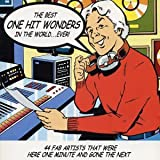Best One Hit Wonders in the...