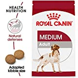 Royal Canin Medium Breed Adult Dry Dog Food, 6 lb. bag
