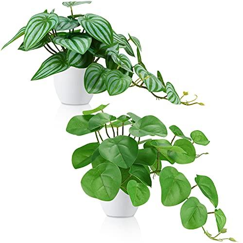 KiddosLand - Plantas en macetas Falsas, 2 Piezas de Diferentes Plantas...