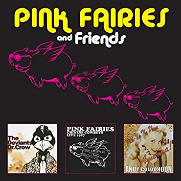 Pink Fairies and Friends