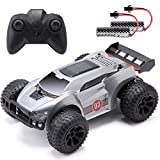 ArgoHome RC Car Remote Control Car High Speed RC Racing Cars 15 KM/H, 2.4 GHZ Fast Toy Car for Kids, 2 Rechargeable Batteries for 60 Min Play, Toy Gifts for Boys & Girls Grey