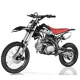 125cc Dirt Bike Pit Bike Adults Dirtbikes Pitbikes 125 Dirt Pit Bike (Black)
