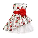 Rawdah Robe De Princesse Formelle Filles Robe Jupe Fleur Impression Arc Grande Fleur...