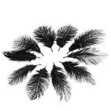 Zoom IMG-1 10pcs piume di struzzo nere