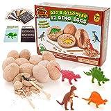 Prehistoric World - Juguete de Dinosaurios - Kit de excavación de Huevos de Dinosaurio - Incluye 12...