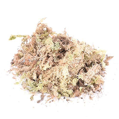 Garden Moisturizing Ernährung Bio-dünger Sphagnum Dry Moss Pflanze Trocken Moss Garden Moisturizing Geeignet für Orchideen Phalaenopsis 100g Nahrhafte Organischer Dünger Garden Supplies