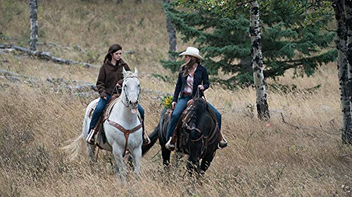 511NKu0JUwL - Heartland - Paradies für Pferde: Staffel 11.2 (Episode 10-18) [3 DVDs]