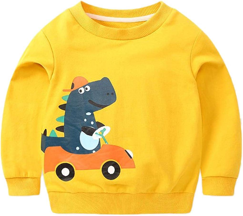 Qinni-shop Baby Toddler Boys Kids Dinosaur Print Pullover Sweatshirt Crew Neck Sweater