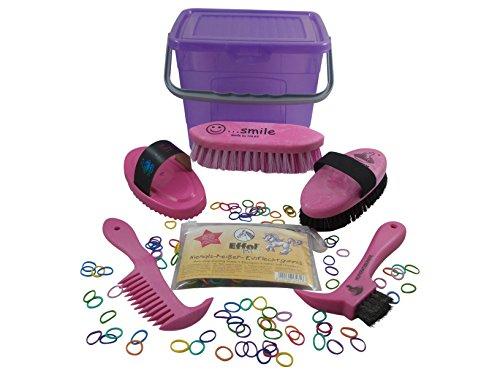 Haas Putzbox für Kinder ein Putzkasten in lila - pink gefüllt mit Striegel Kardätsche Hufkratzer Waschbürste Mähnenkamm + Effol Niemalsreißer in bunt