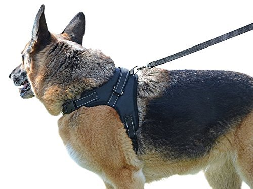 My Pets America Dog Harness for Large, Medium or Small Dogs - Complete Harness & Leash Set; Reflective, Adjustable Harness With Handle. Excellent for Training, Walking, Hiking. No Pull Effect.