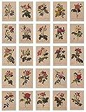 24 hojas postales vintage, con bonito lenguaje floral impreso en papel de estraza, amor, amistad, vida, motivación, tarjetas de felicitación – rosa