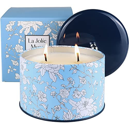 LA JOLIE MUSE Vela Citronela - Vela aromatica grande, vela de interior y exterior, 2 mechas, cera de soja, 400g, 50 Horas