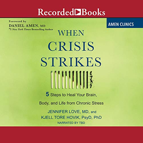 When Crisis Strikes  By  cover art