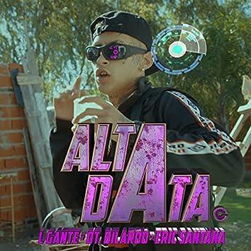 ALTA DATA