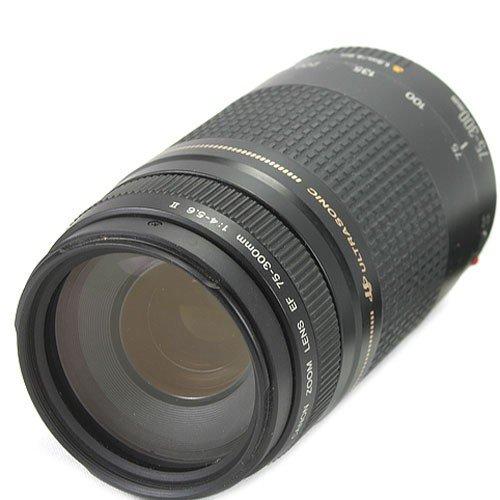 Canon 75-300mm/ 4,0-5,6/ USM Objektiv
