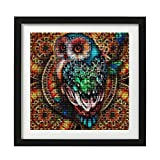 Yomiie 5D Diamond Painting Mandala Owl Full Drill by Number Kits, Colorful Animal DIY Paint with Diamonds Art Rhinestone Embroidery Craft for Home Room Decoration (12x12 inch)