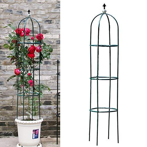 Bulary Pflanze Klettergerüst Gartenpflanze Stützring Blume Stützklettern Grow Cage Eisensäule Blumenrahmen Für Die Gartendekoration
