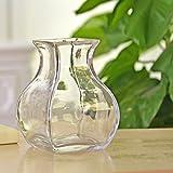 florero de cristal esférico/acuario de agua de la cultura de flores-arreglos de dispositivos-B