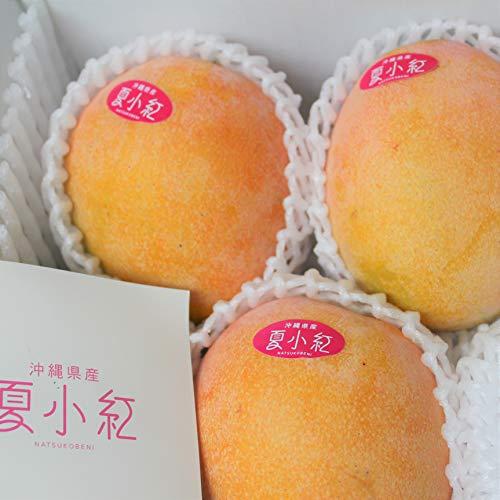 夏子紅マンゴー(優品)1kg(2〜4個)