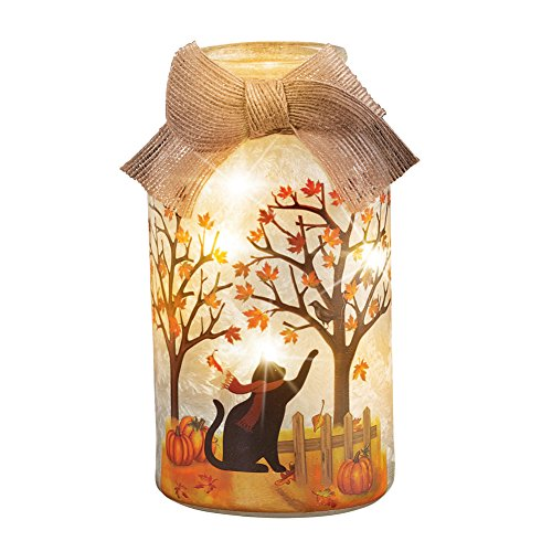 Collections Etc Fall Pets Mason Jar Plug in Lamps, Adorable Tabletop Décor, Cat