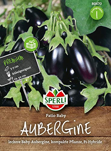 80670 Sperli Premium Aubergine Samen patio Baby | Baby Aubergine | Balkon Geeignet | Aubergine Saatgut | Auberginen Samen